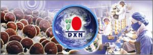 DXN a ganodermás MLM